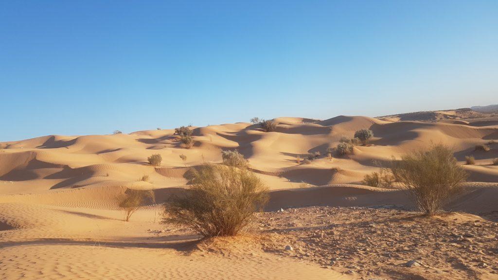 Foto: Vlastní - poušť